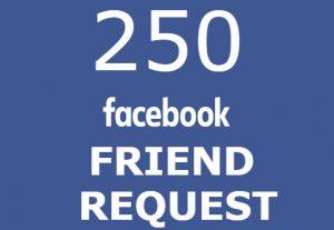 250 Facebook friend request high quality