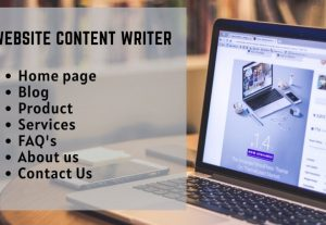 I will write catchy professional 500 words website content in a day