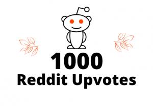 Get 1000 Reddit Upvotes Lifetime guaranteed nondrop permanently