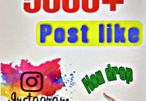 Provide 5000+ Post Likes on Instagram photo or video post . Non drop guaranteed!