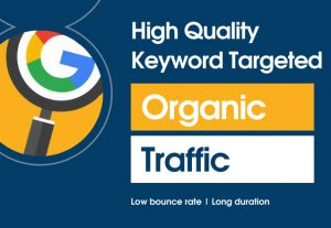 Drive Keyword targeted organic traffic to your website