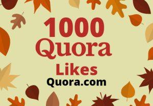 Add 1000 Quora Likes Lifetime  Guaranteed Quora Promotion