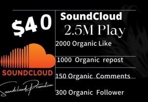 Do Organic Music Promotion 2.5M Play, 2000 Like , 1000 repost ,150 Comments & 300 Follower