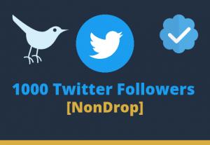 Add 1000 Twitter Followers Lifetime Guaranteed NonDrop