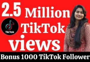 2.5 million TikTok views. Guarantee +1000 TikTok Followers